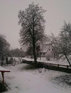 Dom Państwa Ręcławowiczów, Domacyno zima 2016r.