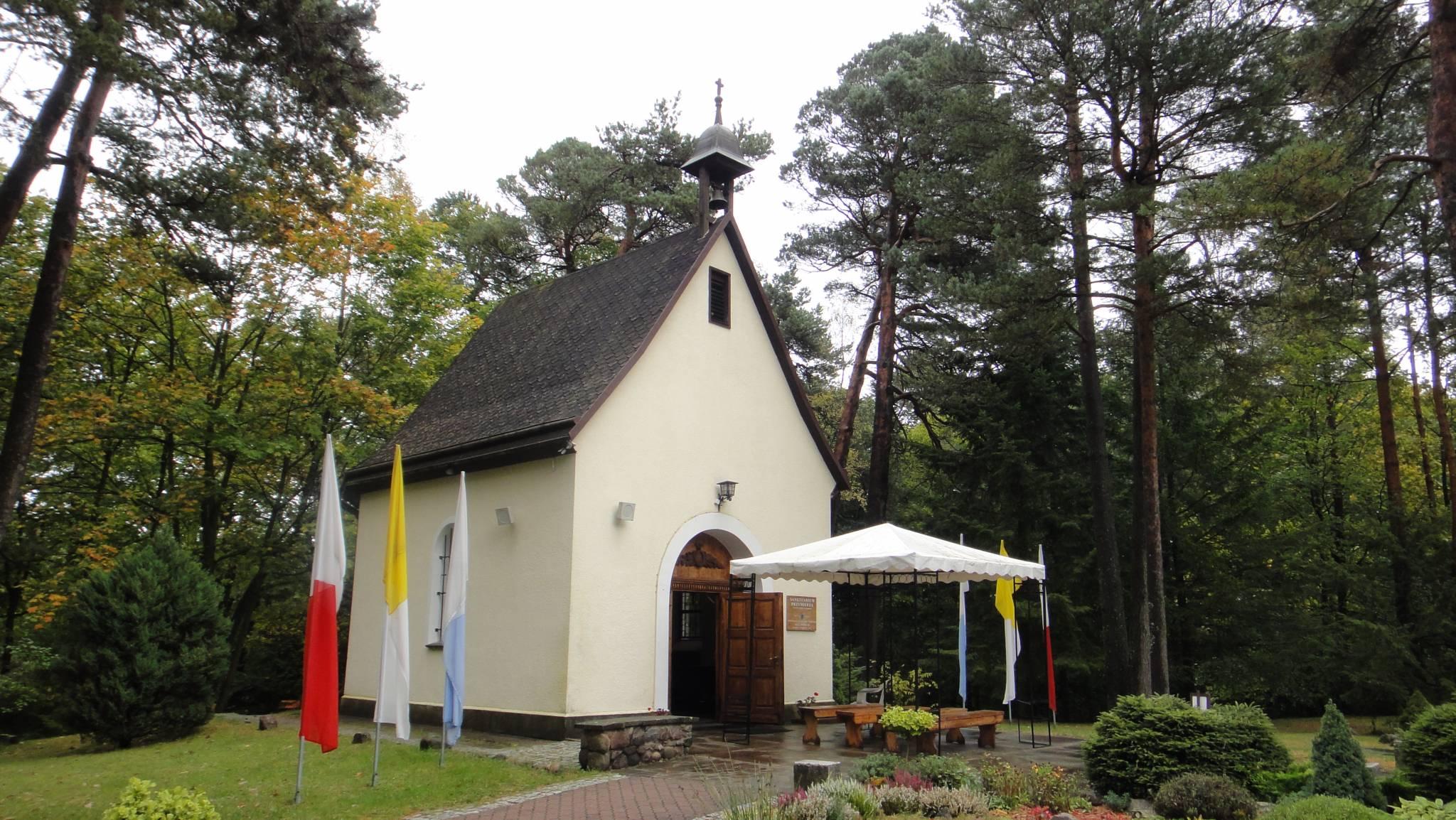 2017-10-07 Pielgrzymka Świętych Gór Diecezji 11