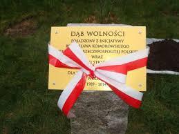 Tablica upamiętniająca zasadzenia Dębu Wolności wDomacynie 15.11.2014r.
